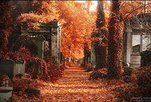 Cemeteries / by Melanie Nepsa-Goss