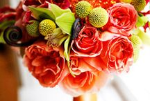 Fall Flowers + Bouquets / by Brenda of Brenda's Wedding Blog