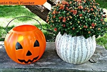 Halloween / by Kristi Drane