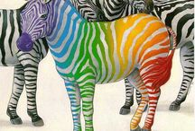 ZEBRA Print / by Tina Haralampopoulos
