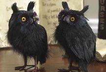 work: Museum of Fright / by jamie gwynn