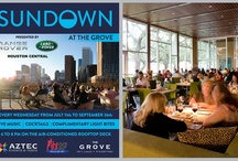 Local Events / by Weddings in Houston Magazine