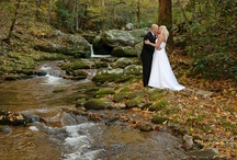 Wedding/honeymoon  / by Teri Shisler