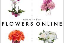 Flores & flower & Floryfrescura.com / Tablero sobre flores, arreglos florales, rosas tatuadas y articulos que se publican en el blog http://floryfrescura.com/blog, de #floryfrescura / by Juan Antonio Diaz