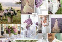 Dream Wedding / by Meghann Taibl