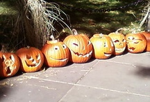 halloween & other holidays / by Judy Ziebell