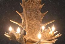 Antler Chandeliers from Rocky  / Find your perfect antler chandeliers to fit in any room!  / by Rocky Mountain Decor