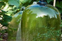 Garden Gold / by Lynn Franklin