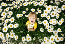 INSPIRED BY kids photos / by Mandi Carroll