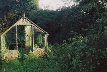 Home - In the Garden / by Grace Bartlett