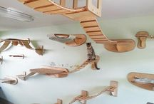 Cat stuff / by Liz Veach
