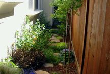 Side yard / by Andee Lou