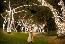 My December 2014 Wedding / Ideas for my December 2014 Wedding. / by Estella Stephney