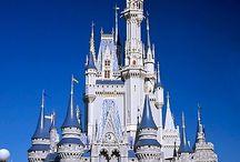 Disney November 2014 / by Stephenie Thompson