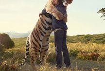 I love animals! / by Theresa Tregaskis