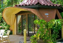 Ylang Ylang Rooms and Grounds / Private beach bungalows, suites and rooms and a jungle swimming pool!  / by Ylang Ylang Beach Resort