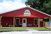 NC Cheese Trail, leaf peeping,vinyards, and breweries / by Isabella Bertelli