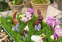 Hoppy Easter / by Lindsay DeHartchuck
