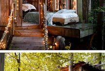 Tree houses I want my husband to build me! / by Jessica Harmon