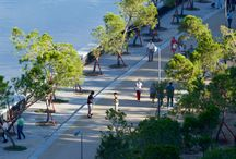 Landscape Architecture / by Greenspired