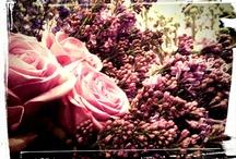 Sneaky peek / by Philosophy Flowers Official