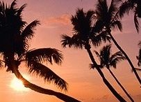 ~Hawaii~ / by ~Kimberly~