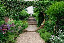 Garden / by Ann Hathorn