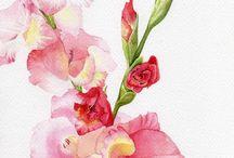 Watercolor / by Kathryn Kraus-Morris