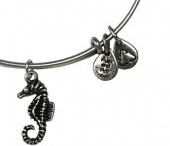 Alex & Ani I need to add to my collection / by Melanie Amend-Waddell