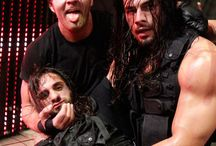 The shield / by Alexis Taylor