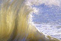 OCEAN! / by Sally Crist Seier
