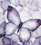 I Wear Purple for Me / ~a collection of pins about living with chronic illness and pain . . . purple is the awareness colour for Lupus, and the purple butterfly the 'symbol' of Lupus~ / by Kate