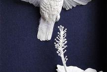 Paper Sculpture / by Karin Araujo Arruda