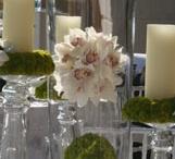 Flowers / by Cheeca Weddings
