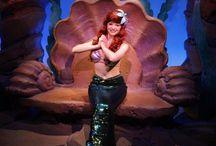 Walt Disney World / Travel / by Meredith Esarey