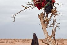 Picturing Refugee Camps  / by Women's Refugee Commission