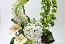 Florist / by Anh Thư Bùi
