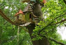 tree houses  / by Megan Diblin