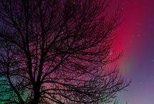 Night Skies / by Debby Watkins