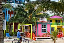 Living in Belize / by MargaLea Isaacs