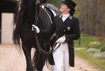 Horses / by Ashlyn Cooper