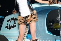 Animal Costume / by Eva Spring