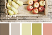 Color Palettes / by Tricia Knight