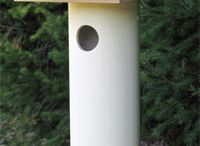 bird/insect houses/feeders / by Jennifer D'Aigle