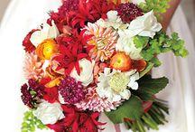 Fall Bouquet Goodness / by Floret Cadet