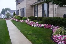 Landscaping / by Beth Hughes