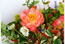 Best blooms / by Jessica Camfield