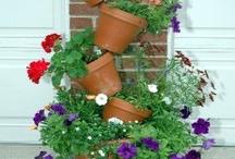 gardening  / by Lindsey Nunn