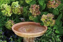Garden Gorgeous / by Michelle L. Hankes