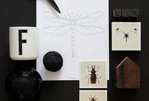 Design / by Millaray Mandujano